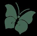 purimago_logo_gruen